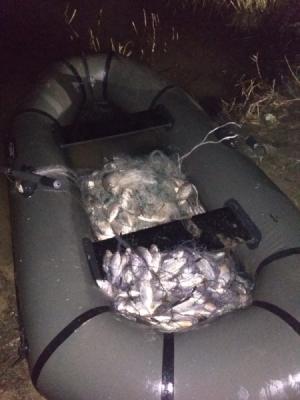 На Біловодському водосховищі затримано порушника з 51 кг риби
