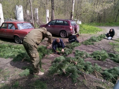 На водоймах Луганщини встановили нерестові гнізда