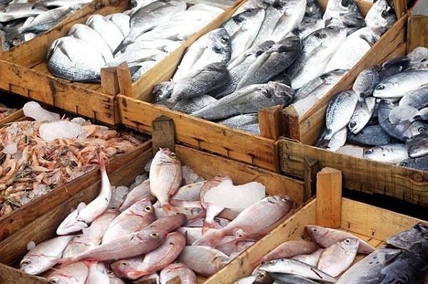 Як не помилитися у виборі якісної риби
